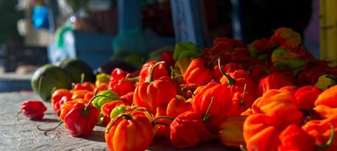 Sabores de Margarita: cocina tradicional